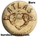 Atlas Egitim Vakfi Burs